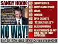 Sandy-hook-hoax.jpg