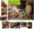 Sarmin BB Remnants Taleb Details.png