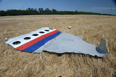 MH17 forward left side panel.jpg