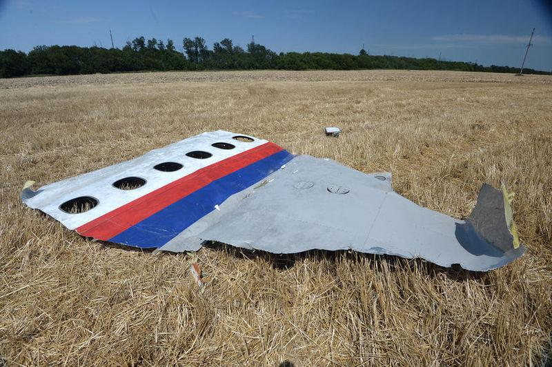 File:MH17 forward left side panel.jpg