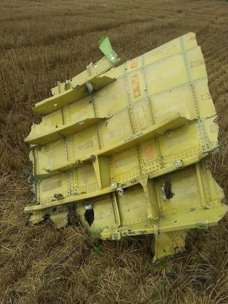 File:MH17 small roof section.jpg