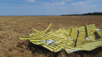 MH17 roof section STA466.jpg