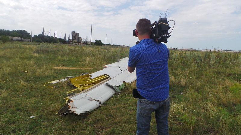 File:MH17 left wingtip.jpg
