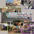 Alep Univ encampment study (1).png