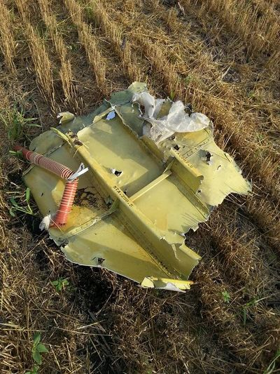 MH17 smaller roof section.jpg