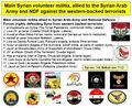 Syrian volunteer militia.jpg