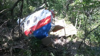 MH17 door section in forest.jpg