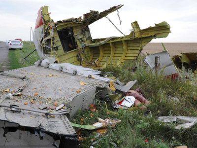 MH17 tailplane.jpg