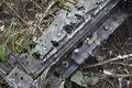 MH17 windshield frame Paris Match.jpg