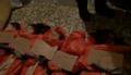 Homs Bahader-Akra children.png