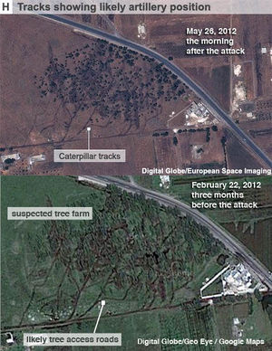 Taldou Suspected Tree Farm.jpg