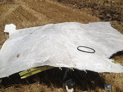 MH17 Forward Fuselage Roof.jpg