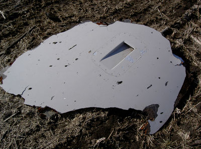 MH17 left engine nacelle top.jpg