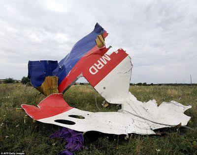 MH17 door section.jpg