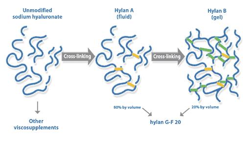Synvisc-onehylan.jpg