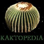 File:Kaktopedia.png