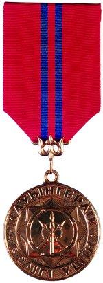 KZ medal ghauengerlik erligi ushin.jpg
