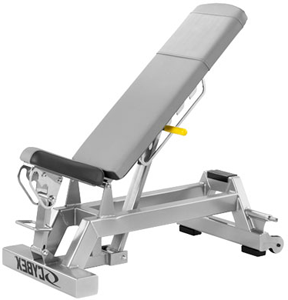 File:Cybex19110.png