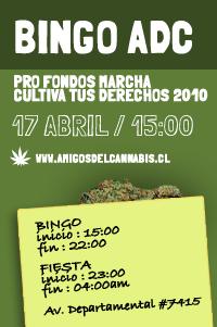 File:Santiago 2010 April 17 Bingo.jpg