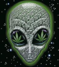 Why aliens visit.jpg