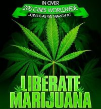 File:Global Marijuana March 2.jpg