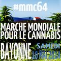 Bayonne 2014 May 10 France.jpg
