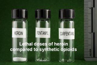 Lethal doses of heroin compared to synthetic opioids.jpg