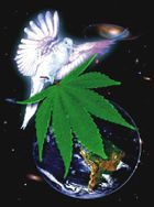 Dove cannabis earth 4.jpg