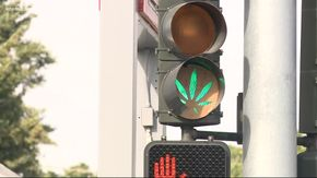 Spokane, Washington cannabis green light.jpg