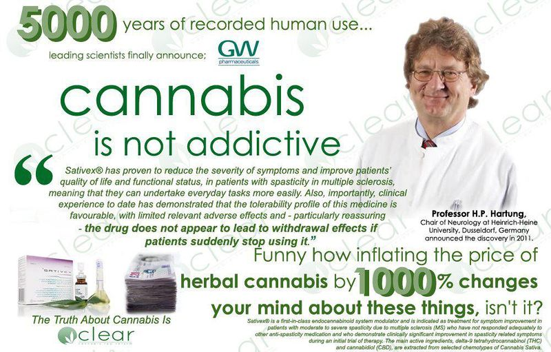 File:Cannabis is safe and not addictive.jpg