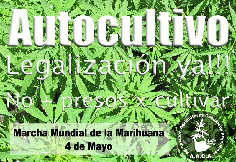 File:Argentina 2013 GMM.jpg