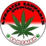 Indonesia legalise cannabis campaign.jpg