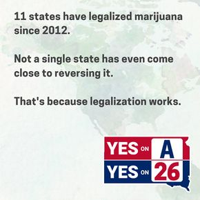 South Dakota 2020 November ballot initiatives flyer.jpg