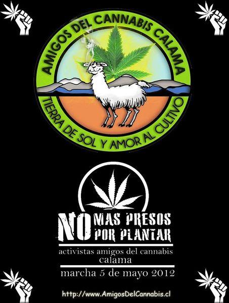 File:Chile 2012 GMM 7.jpg