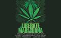 Global Marijuana March 13.jpg
