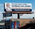 Denver Colorado 2012 April. I prefer marijuana to alcohol.jpg
