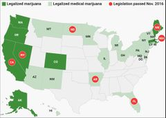 Map of states that have legalized marijuana.jpg