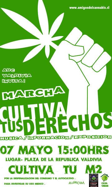 File:Valdivia 2011 GMM Chile.jpg