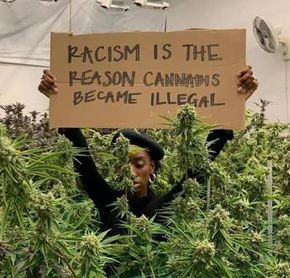 Racism is the reason cannabis became illegal.jpg