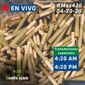 Guadalajara 2020 April 20 Mexico online.jpg