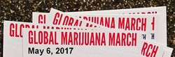 2017 Global Marijuana March.jpg