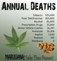 Marijuana is safer than peanuts.jpg