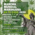 Spain 2020 May 2 online.jpg