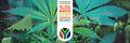 Johannesburg 2020 May 2 South Africa 2.jpg