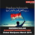 Indonesia 2016 May 7 Global Marijuana March 3.jpg