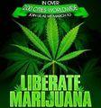 Global Marijuana March 2.jpg