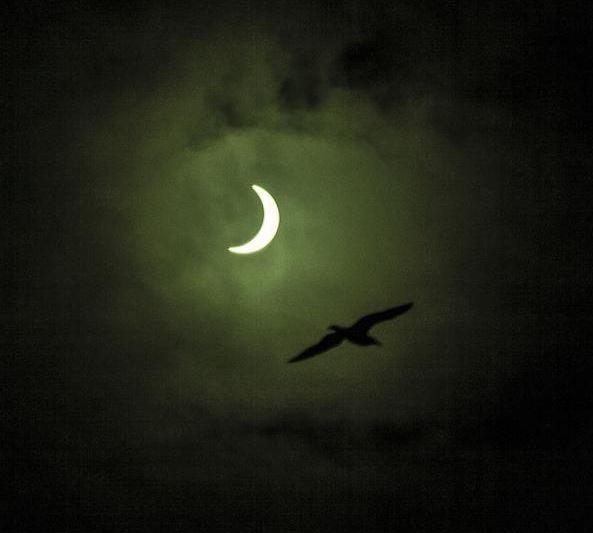 File:Eclipse9.jpg