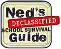 NED-LOGO.png