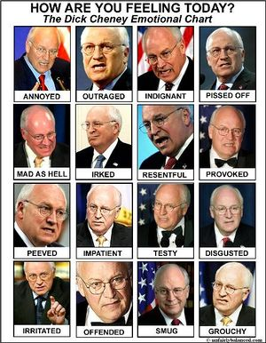Cheney emotional chart.jpg