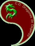 CD Dragones de Daganzo